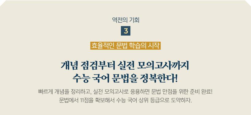 역전의 기회3 개념점검부터 실전모의고사까지 수능 국어 문법을 정복한다!