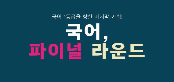 /메가스터디메인/고3N수/왕배너/국어파이널