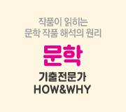 /메가선생님_v2/국어/최인호/메인/문학